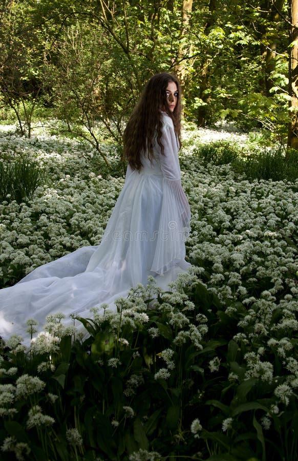 Mooie vrouw die een lange witte kleding in een bos dragen stock afbeelding