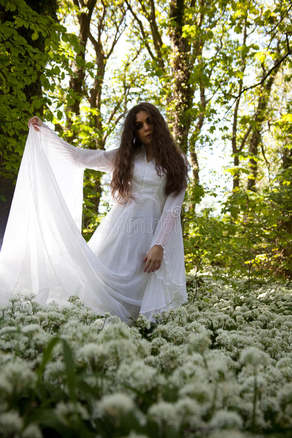 Mooie vrouw die een witte kleding dragen die zich in een bos bevinden royalty-vrije stock fotografie
