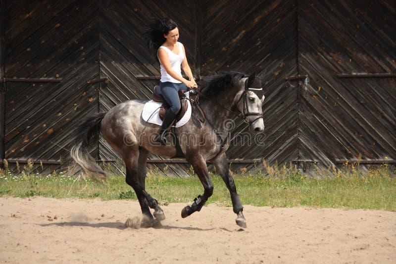 Mooie vrouw die grijs paard berijdt royalty-vrije stock afbeelding