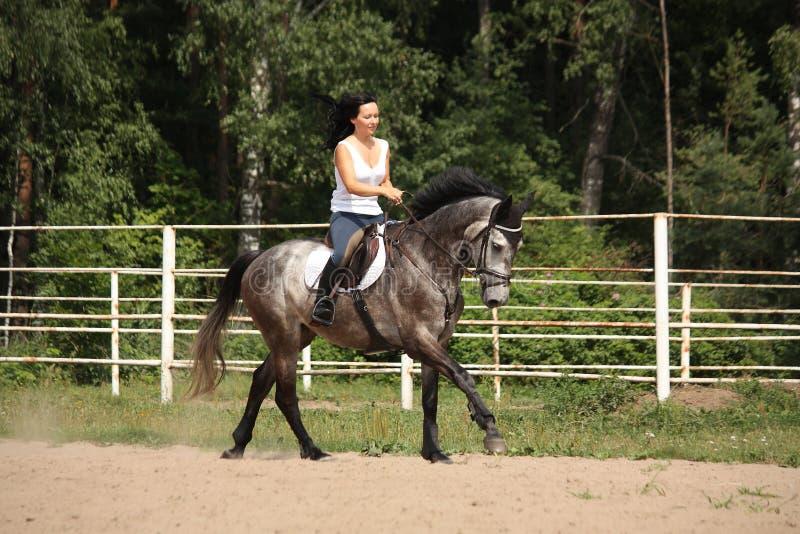 Mooie vrouw die grijs paard berijdt stock foto's