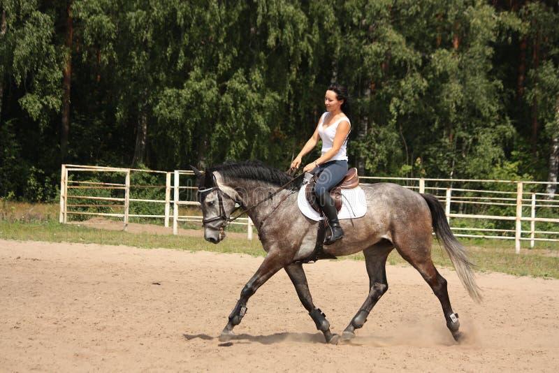 Mooie vrouw die grijs paard berijdt royalty-vrije stock afbeeldingen