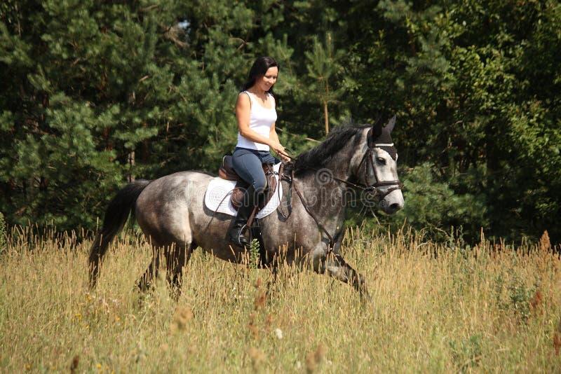 Mooie vrouw die grijs paard in het bos berijden royalty-vrije stock fotografie