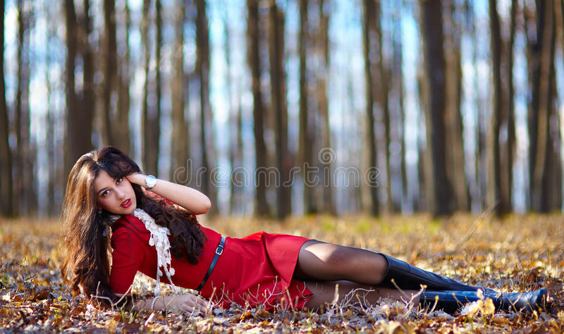 Mooie vrouw die in het hout leggen royalty-vrije stock foto's