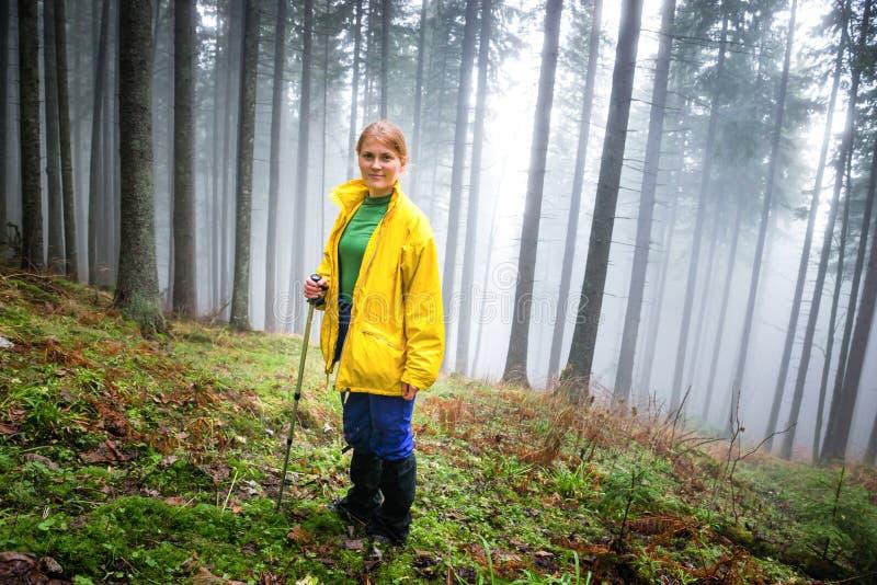 Mooie vrouw in geheimzinnigheid bos royalty-vrije stock foto's