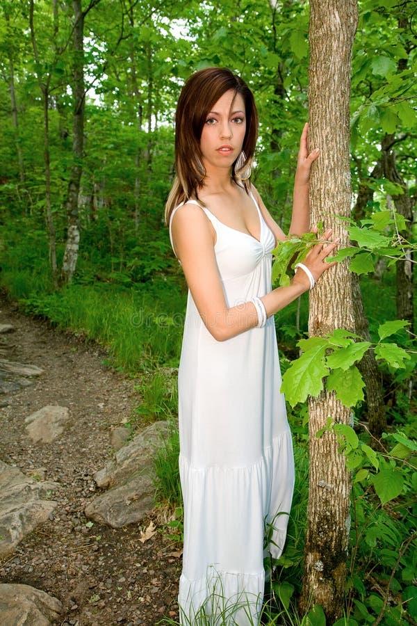 Mooie Vrouw in het Bos stock foto's