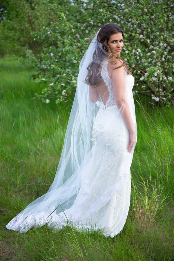 Mooie vrouw in huwelijkskleding met sluier in het bloeien de zomer garde stock foto