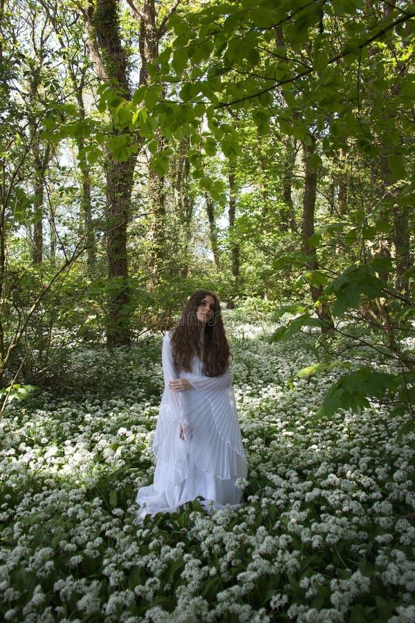 Mooie vrouw in lange witte kleding die zich in een bos bevinden royalty-vrije stock afbeelding