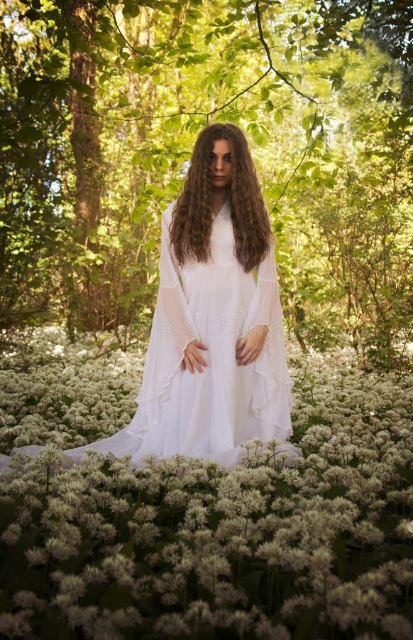 Mooie vrouw in lange witte kleding die zich in een bos op ca bevinden royalty-vrije stock afbeelding