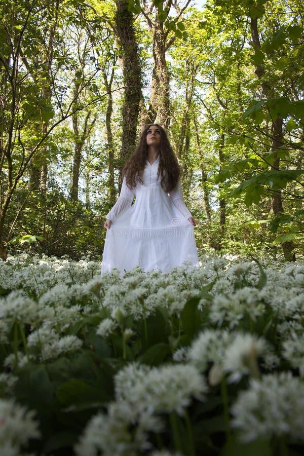 Mooie vrouw in lange witte kleding die zich in een bos op ca bevinden stock afbeelding