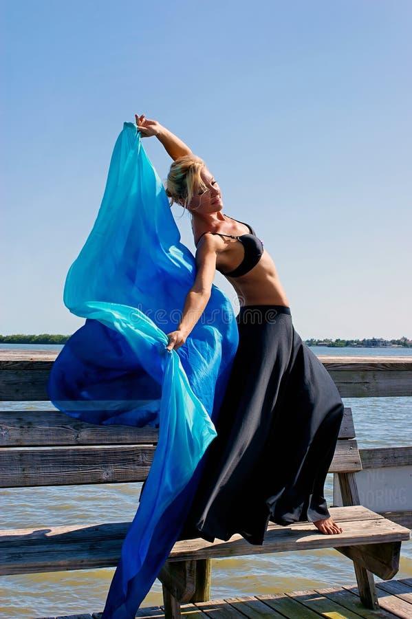 Download Mooie vrouw met zijde stock foto. Afbeelding bestaande uit celebrating - 10779370