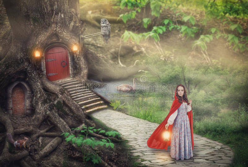 Mooie vrouw in middeleeuwse kleding en mantel in fantasiebos stock illustratie