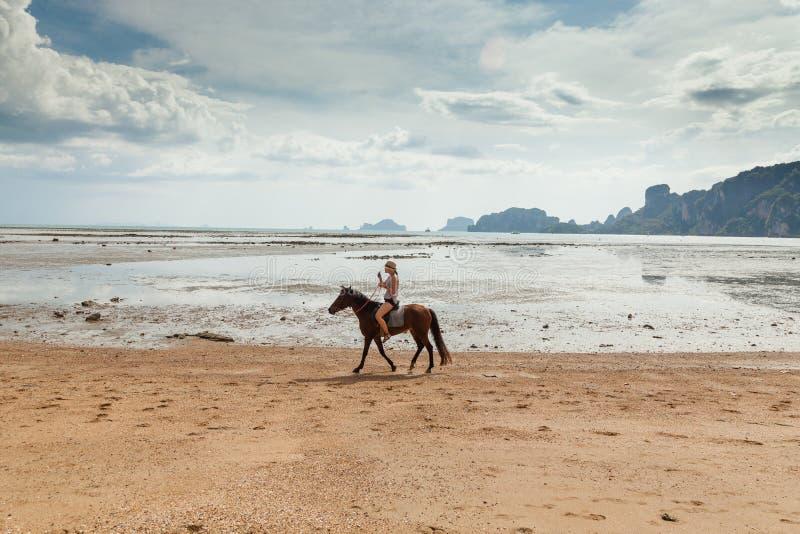 Mooie vrouw op een paard Horseback Ruiter Het tropische strand van het paradijs royalty-vrije stock foto