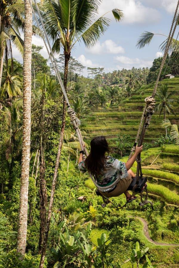 Mooie vrouw op hoge schommeling boven padievelden in Bali stock fotografie