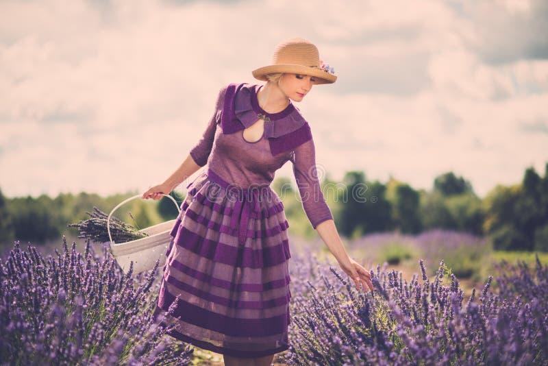 Mooie vrouw op lavendelgebied royalty-vrije stock afbeelding