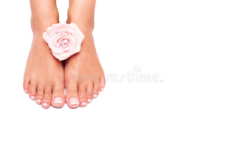 Mooie vrouwelijke benen en voeten op een witte achtergrond stock foto's