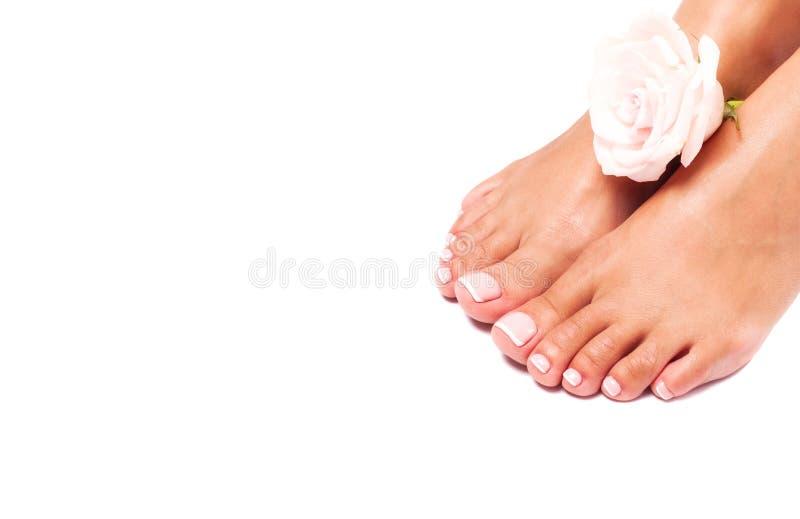 Mooie vrouwelijke benen en voeten op een witte achtergrond royalty-vrije stock foto's