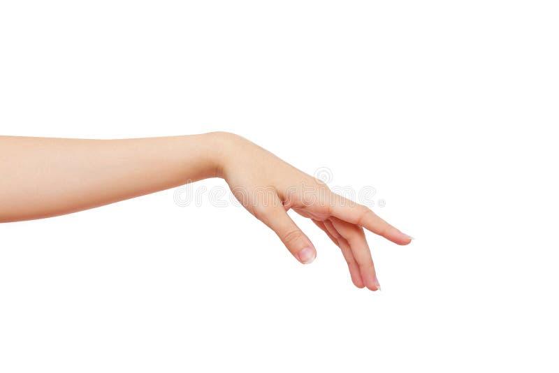 Mooie vrouwelijke die hand op een witte achtergrond wordt geïsoleerd stock afbeelding