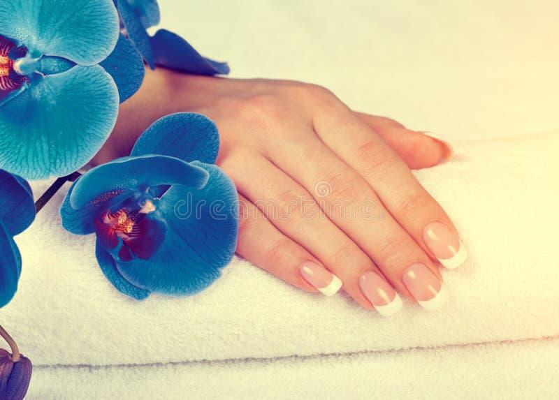Mooie vrouwelijke hand met perfecte Franse manicure royalty-vrije stock fotografie