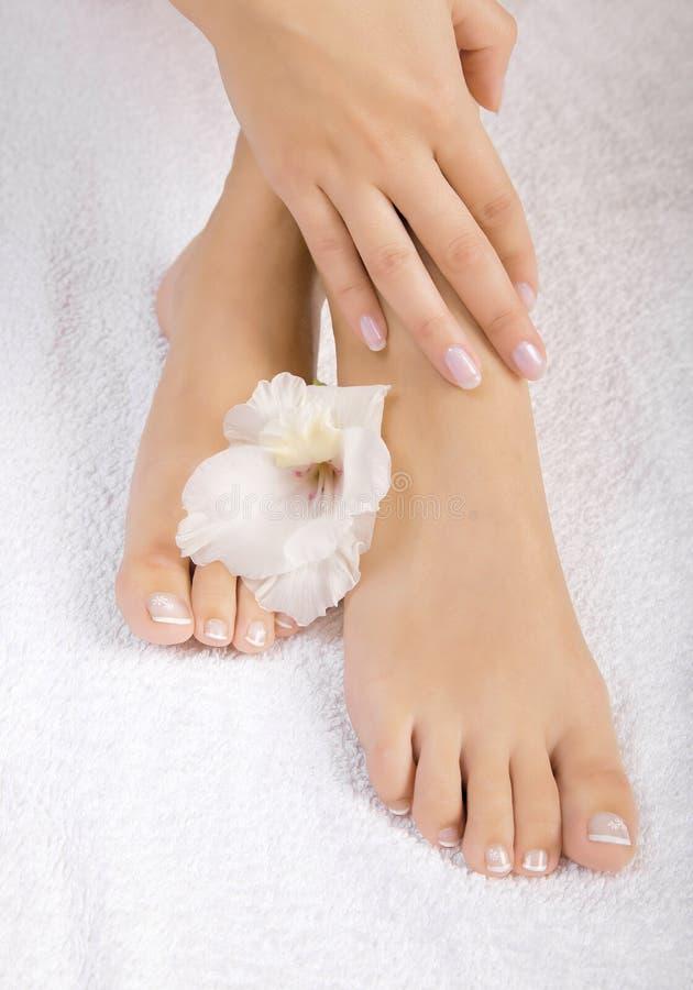 Mooie vrouwelijke voeten stock afbeeldingen