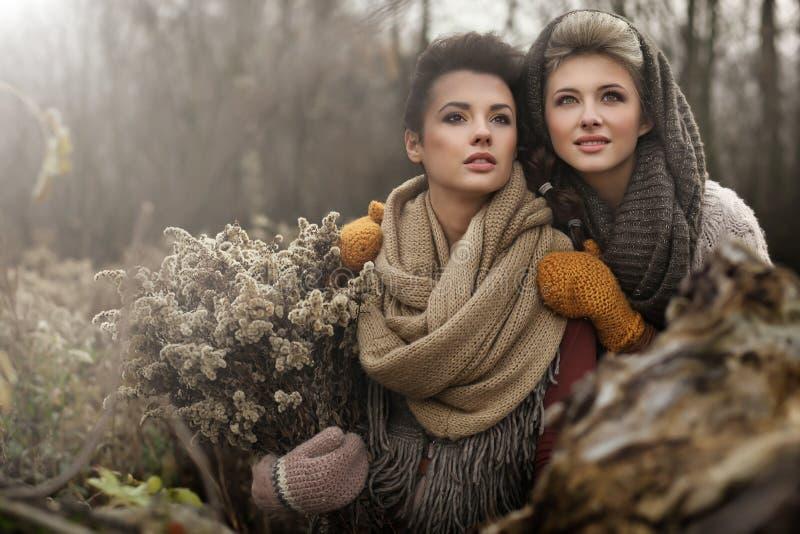 mooie vrouwen royalty-vrije stock foto's