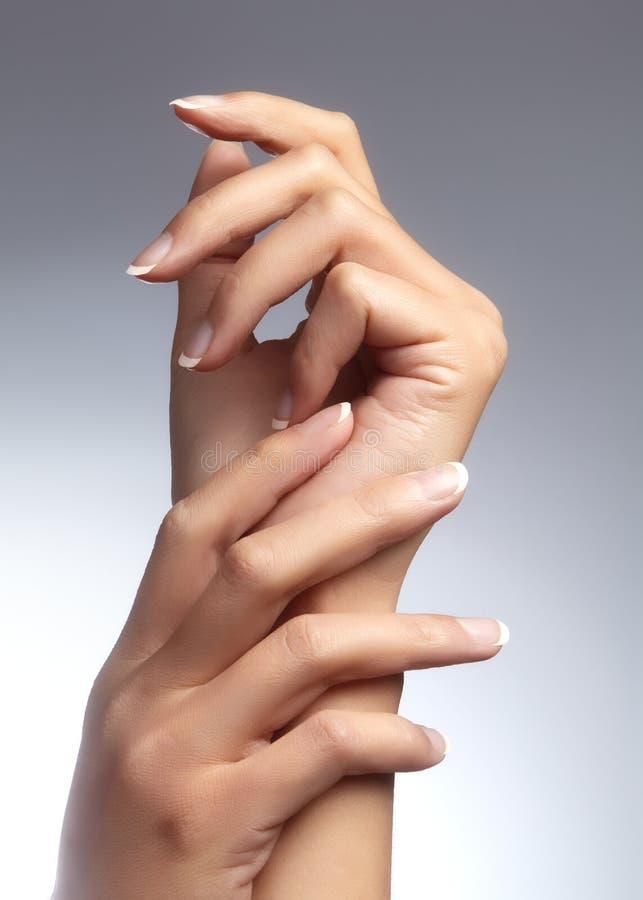 Mooie vrouwen` s handen op lichte achtergrond Zorg over hand Tedere palm Natuurlijke manicure, schone huid Franse spijkers stock foto