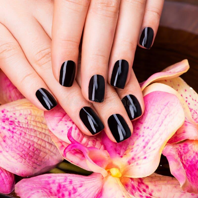 Mooie vrouwenhanden met zwarte manicure royalty-vrije stock foto