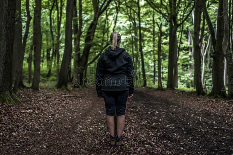 Mooie vrouwenwandelaar die zich op bossleep bevinden die weg eruit zien Wijfje op stijging in aard griezelige mystieke bossen royalty-vrije stock fotografie