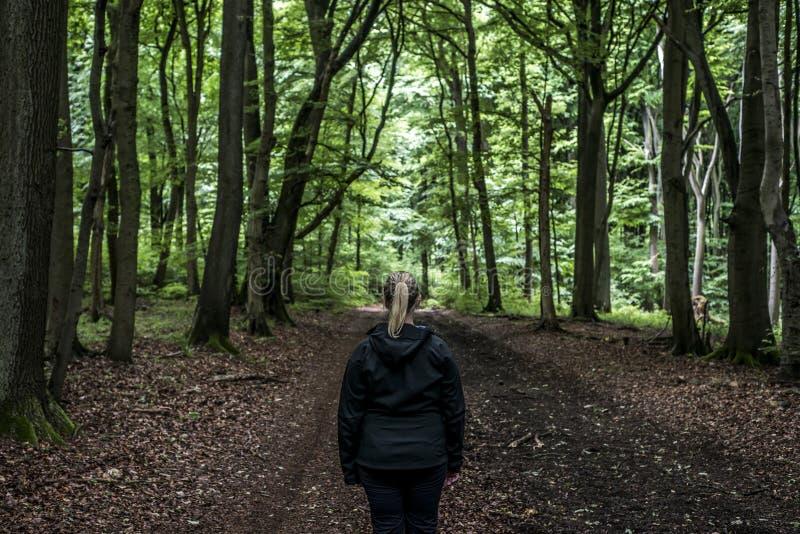 Mooie vrouwenwandelaar die zich op bossleep bevinden die weg eruit zien Wijfje op stijging in aard griezelige mystieke bossen stock afbeelding