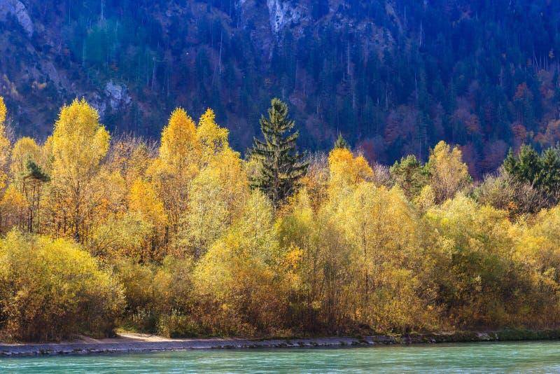 Mooie waterval in de herfst stock fotografie
