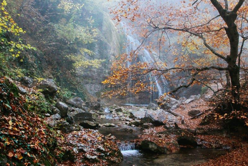 Mooie waterval in de herfstbos in Krimbergen Stenen met mos in het water stock foto