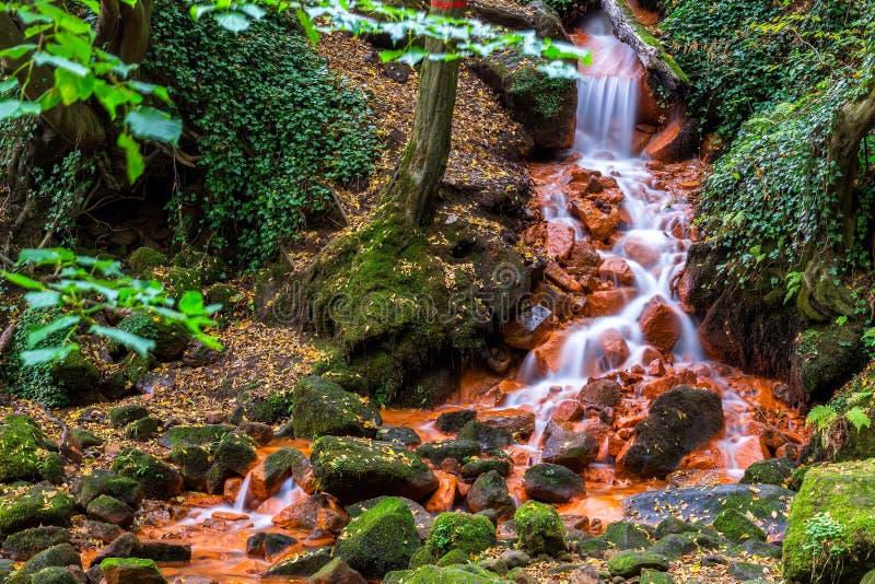 Mooie waterval in diep bos royalty-vrije stock fotografie