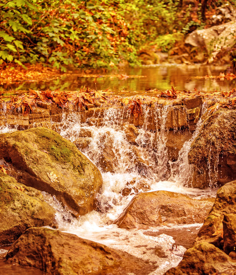 Mooie waterval in het bos stock afbeeldingen