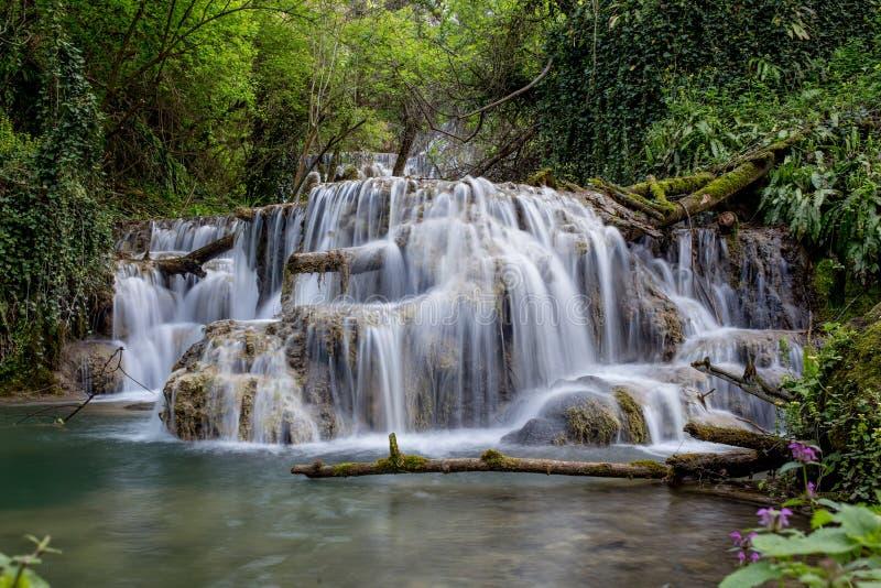 Mooie waterval in het midden van het bos stock afbeelding