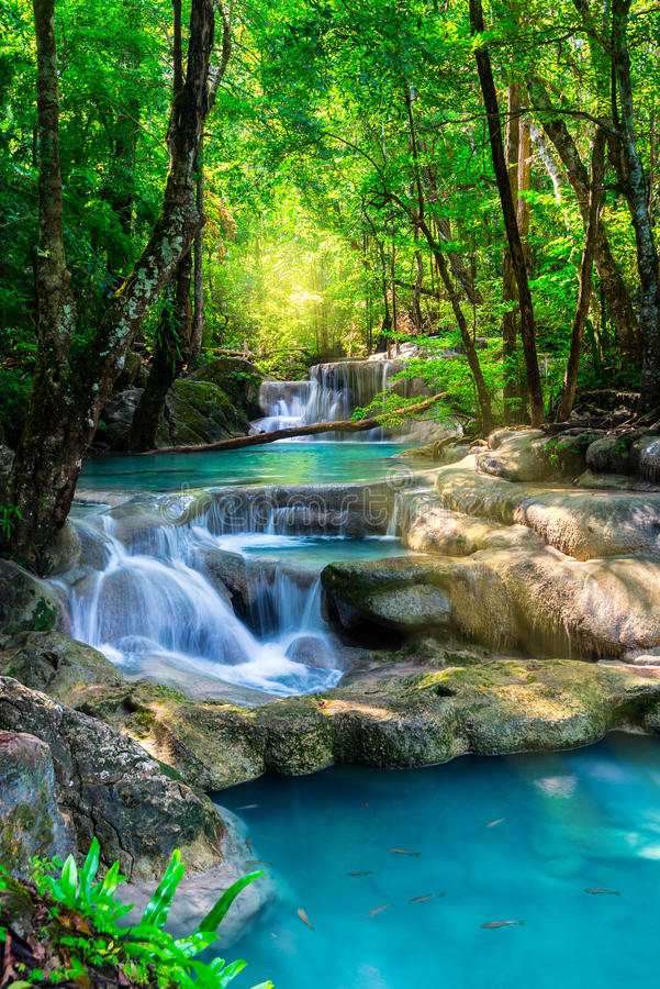Mooie waterval in het tropische bos van Thailand stock foto's