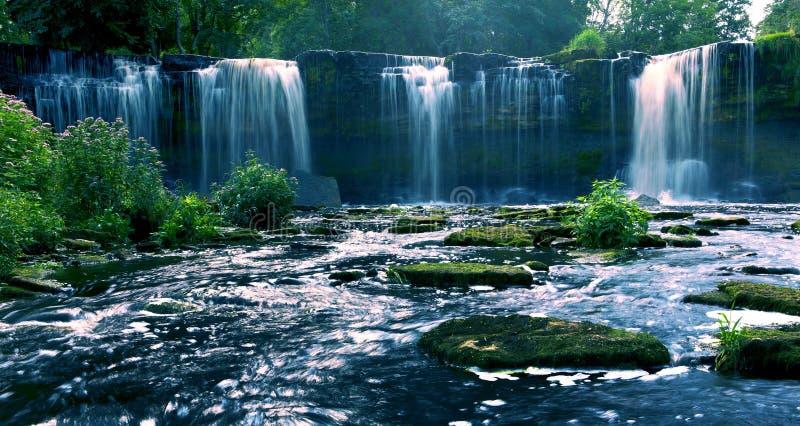 Download Mooie watervallen stock foto. Afbeelding bestaande uit blad - 10775804