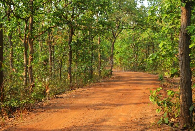 Mooie weg in bos in birbhum stock fotografie
