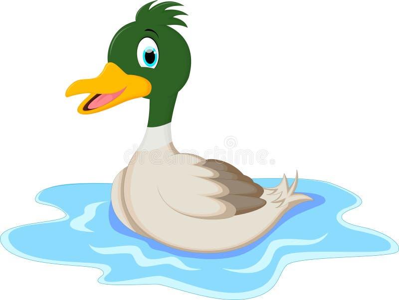 Mooie Wilde eendeend die in een vijver zwemmen royalty-vrije illustratie