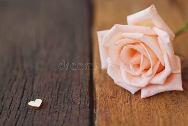 Mooie witte verse die vochtig nam bloemen met mini rode hartcijfers worden verfraaid aangaande houten textuurachtergrond, zachte  stock fotografie
