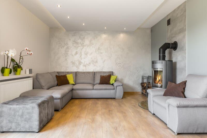 Mooie woonkamer in grijs idee stock afbeelding