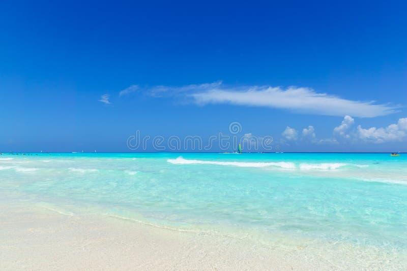 Mooie zachte golf bij tropisch strand met duidelijke hemel stock foto