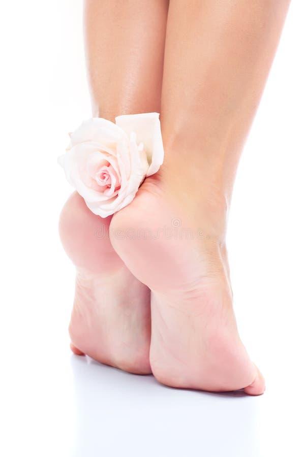 Mooie zachte vrouwelijke die benen, voeten op een witte achtergrond worden goed-verzorgd stock fotografie