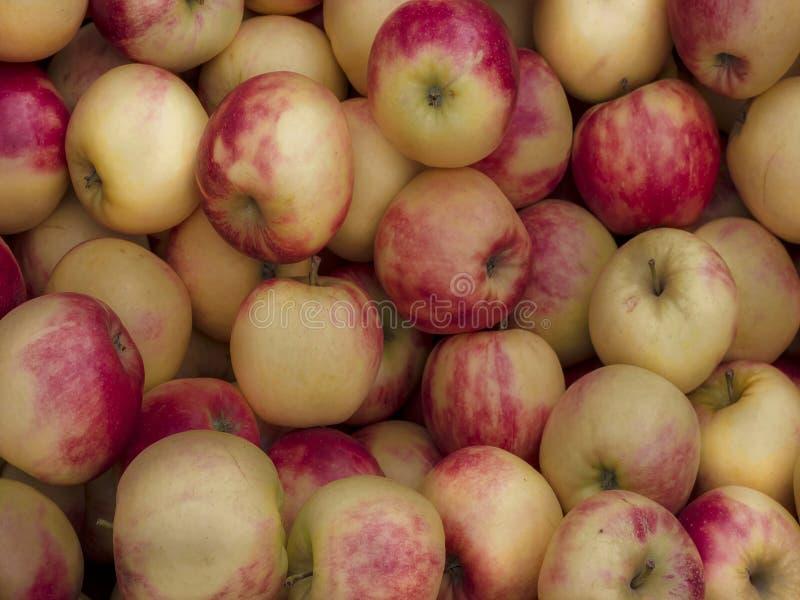 Mooie zoete appelen als achtergrondbeeld stock foto