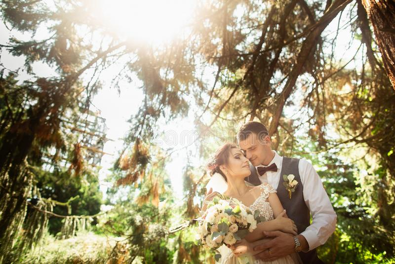 Mooie zonnige dag Huwelijkspaar het stellen op de achtergrond van aard stock foto