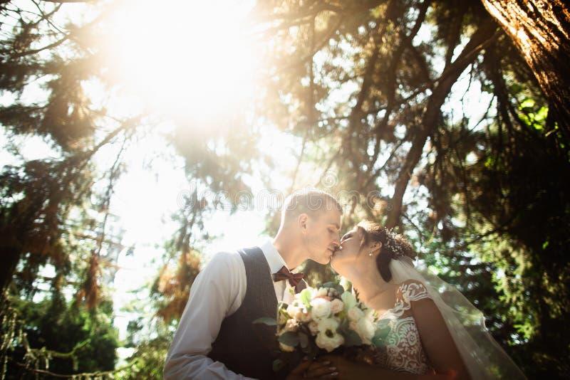 Mooie zonnige dag Huwelijkspaar het stellen op de achtergrond van aard stock afbeeldingen