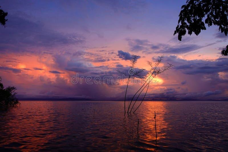 Mooie zonsondergang bij een meer royalty-vrije stock foto's