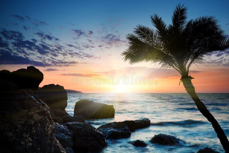 Mooie zonsondergang bij tropisch strand. royalty-vrije stock fotografie