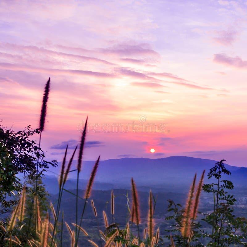 Mooie zonsondergang en hemel stock afbeeldingen