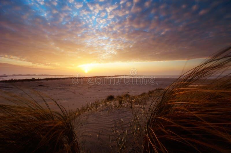 Mooie zonsondergang en zandduinen stock fotografie