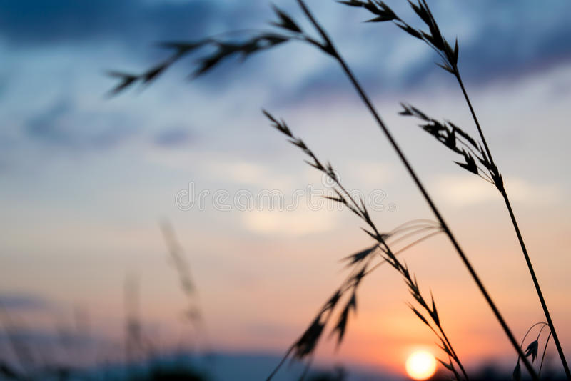 Mooie zonsondergang met blauwe hemel royalty-vrije stock foto