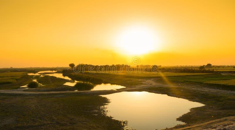 Mooie zonsondergang op groene tarwegebieden en een klein meer stock foto
